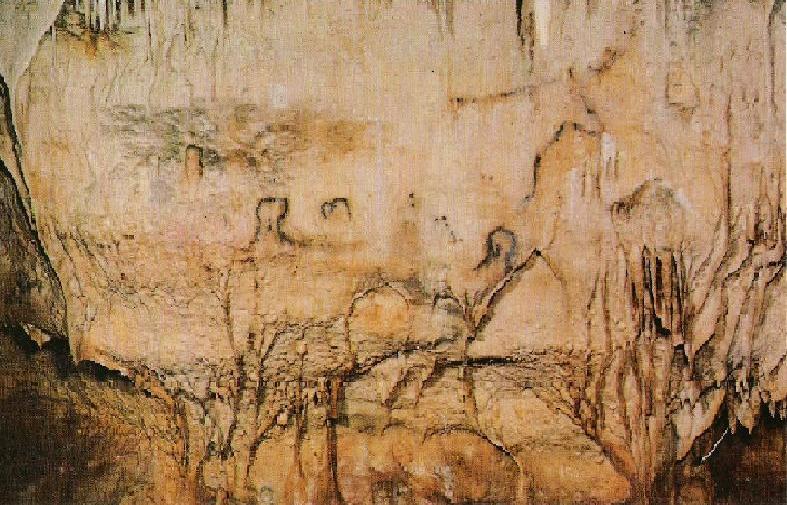 Kalkschicht über Höhlenmalerei